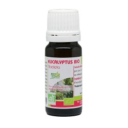 Huile essentielle eucalyptus radiata 10ml