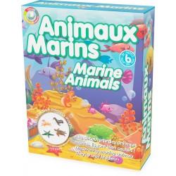 Kit découverte: les animaux marins Ulysse